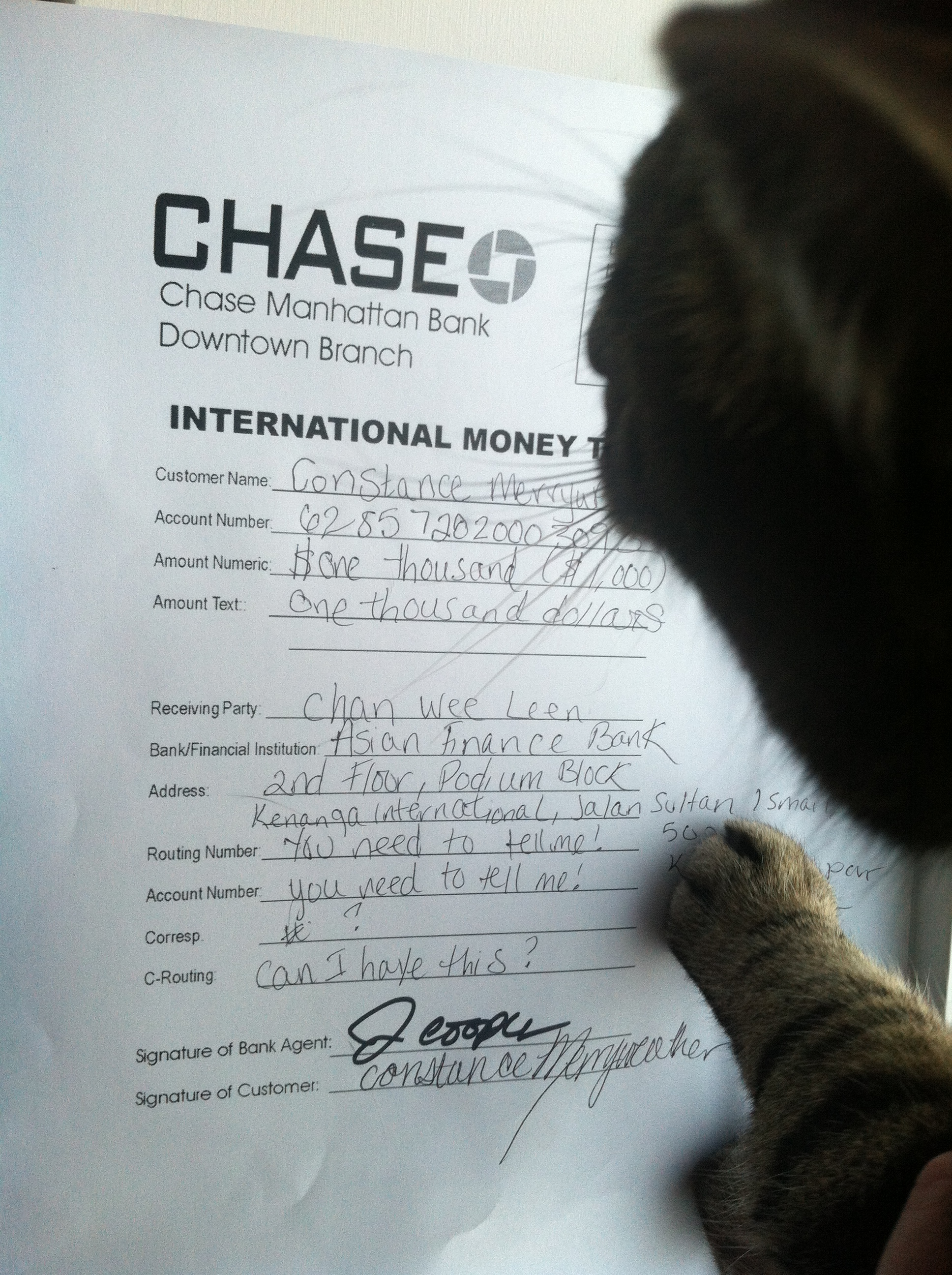 Enchanting Chase Bank International Wire Transfer Routing Number ...
